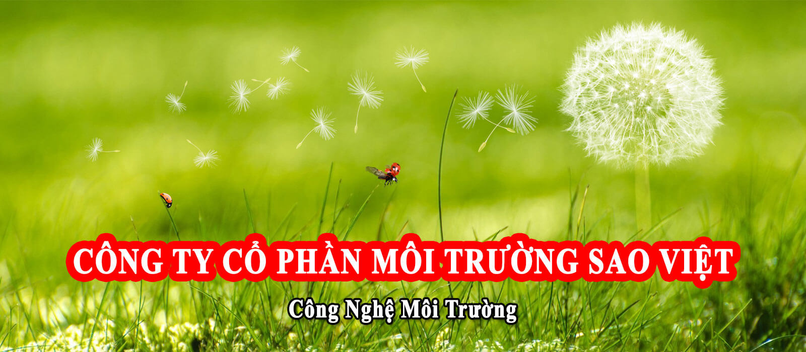Công Ty Cổ Phần Môi Trường Sao Việt